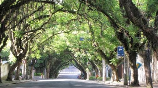 Rua Gonçalo de Carvalho (Foto: divulgação Google images)
