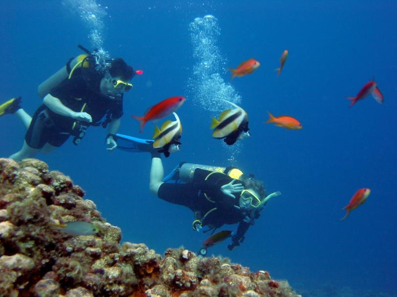 Mergulho em Fernando de Noronha (Fonte: Mundo Crux)